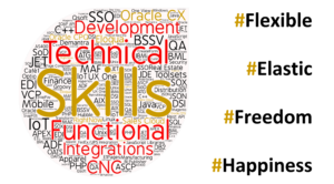 Smart Help Skills Technical Functional JD Edwards Oracle CX Managed Services Projects Upgrades